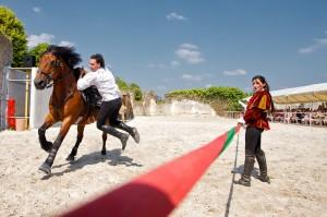 1Spectacle-Equestre-public-chateau-de-Chambord-ludovicletot