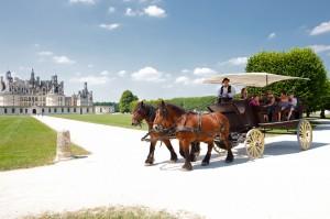 6Caleche-chateau-de-Chambord-ludovicletot
