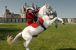 chambord-cavaliere-spectacle-equestre-ludovic-letot