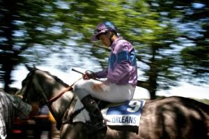 course-hippique-orleans-ludovic-letot1