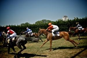 course-hippique-orleans-ludovic-letot6