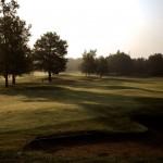 golf-de-limere-ardon-porte-de-sologne-ludovic-letot