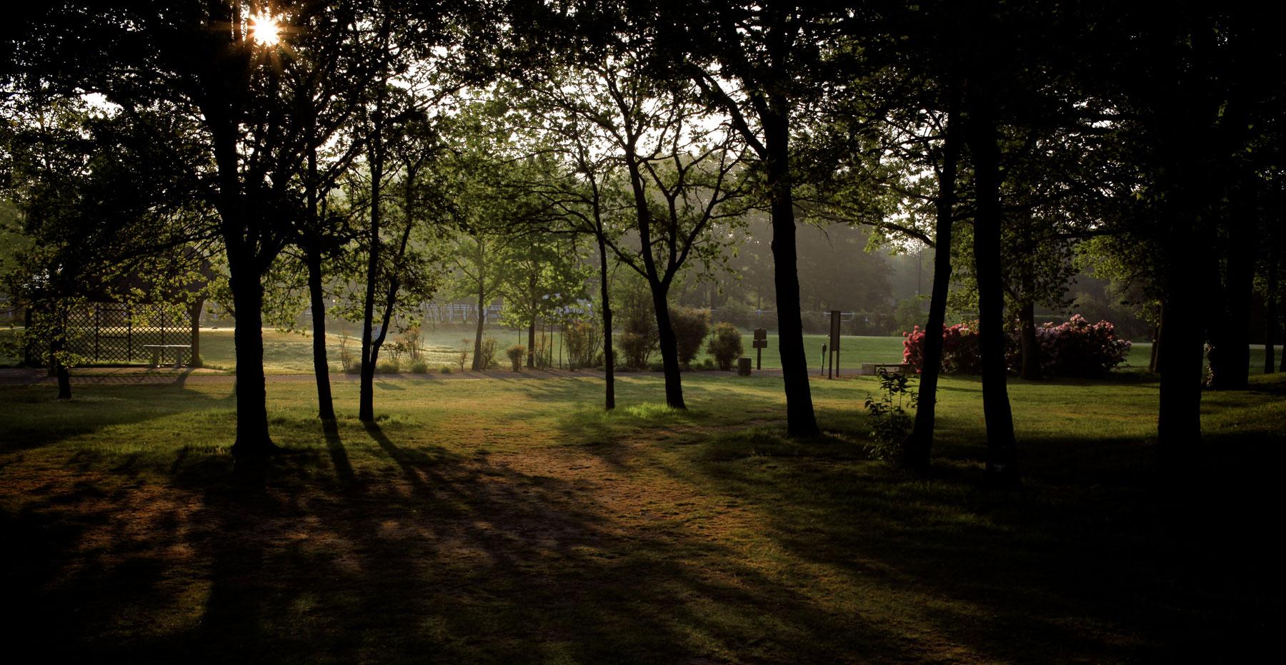 golf-de-limere-ardon-porte-de-sologne-ludovic-letot4